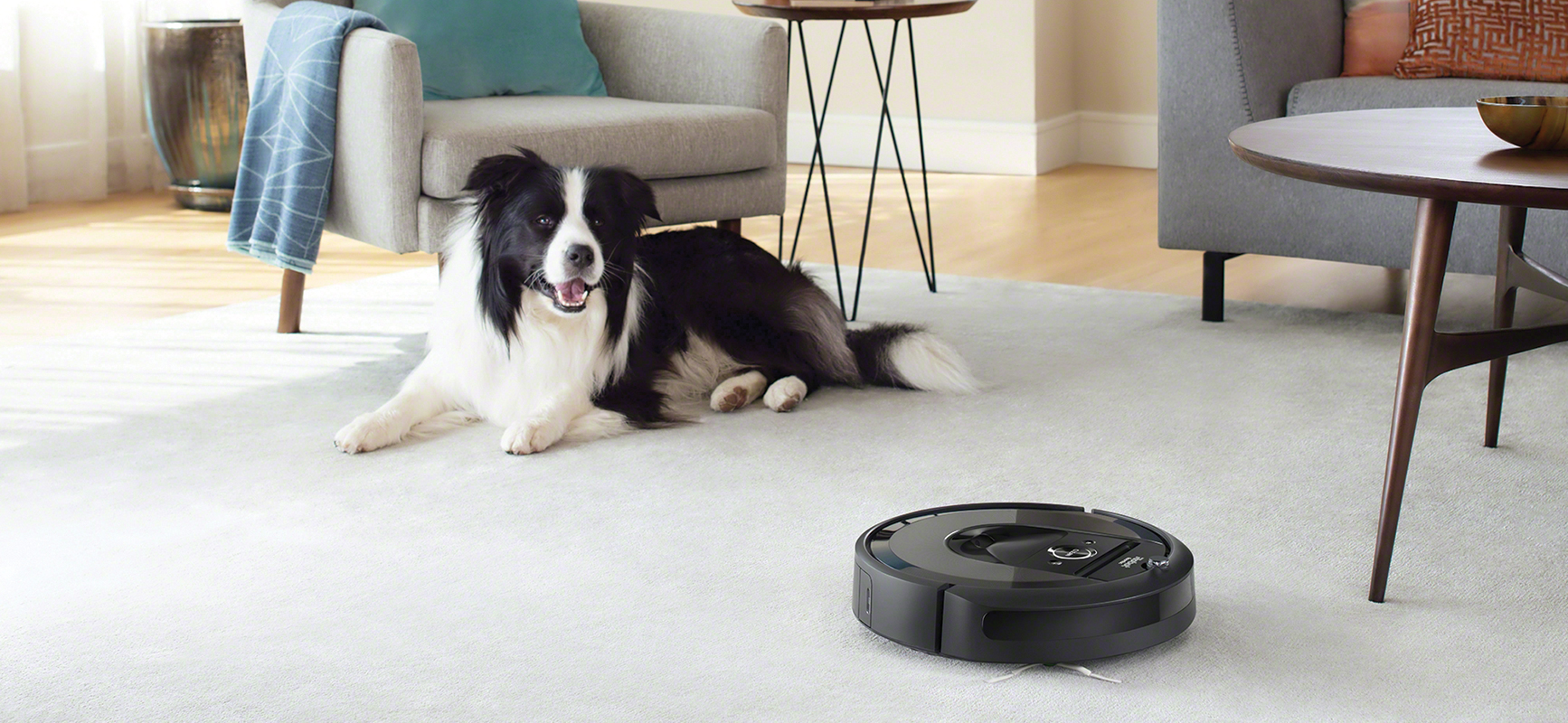 iRobot roomba with pet