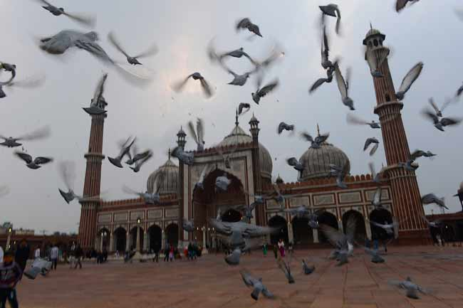sito di incontri a Delhi gratis insegnante online dating